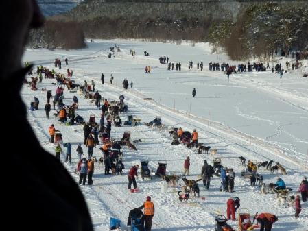 Starten finnmarksløpet 2010